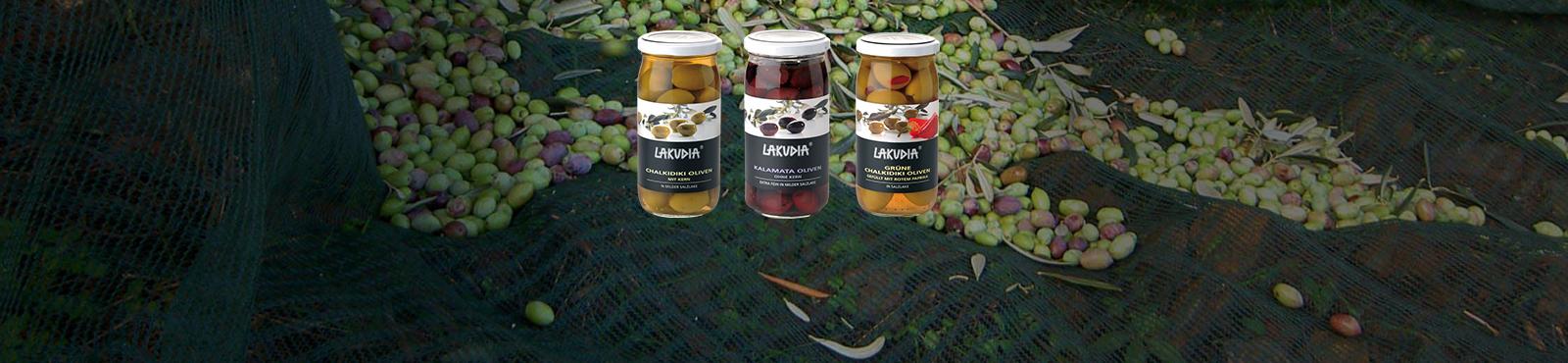 Entdecken Sie unser Oliven Sortiment