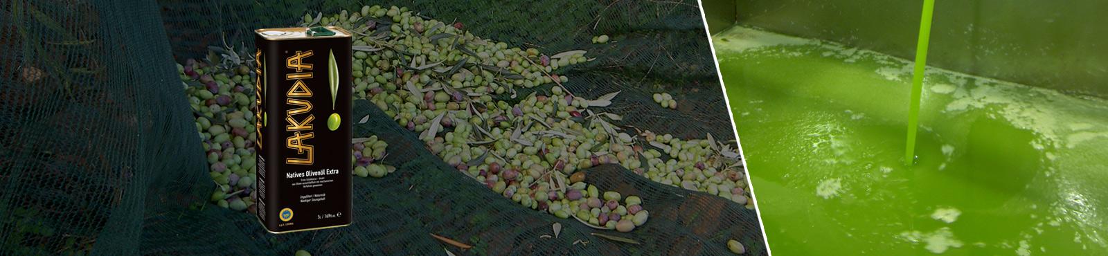 Grünes Olivenöl <br>Ernte Oktober 2021